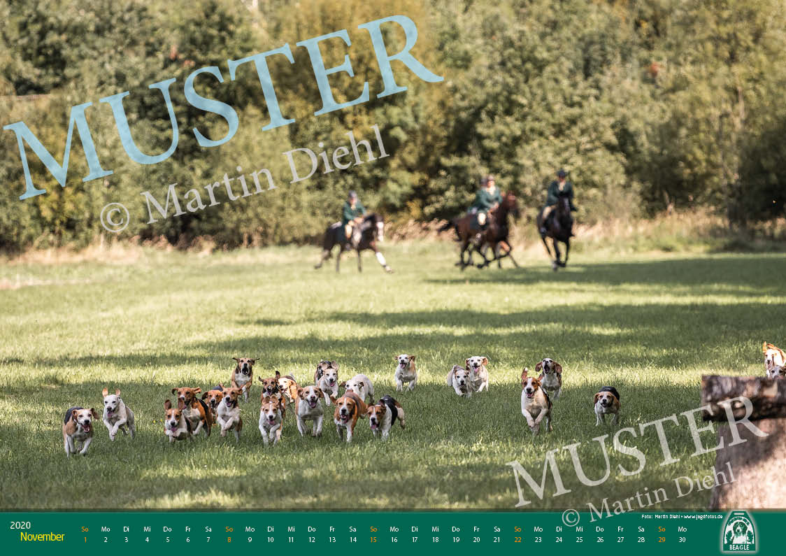 Muster11