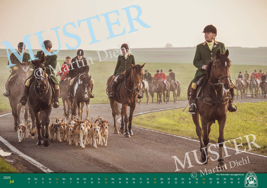 Muster7